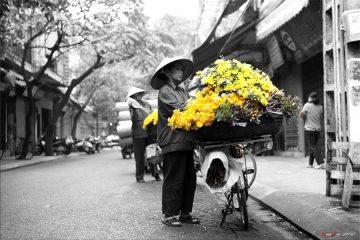 Hà Nội - Việt Nam