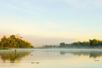 Rừng quốc gia Cát Tiên